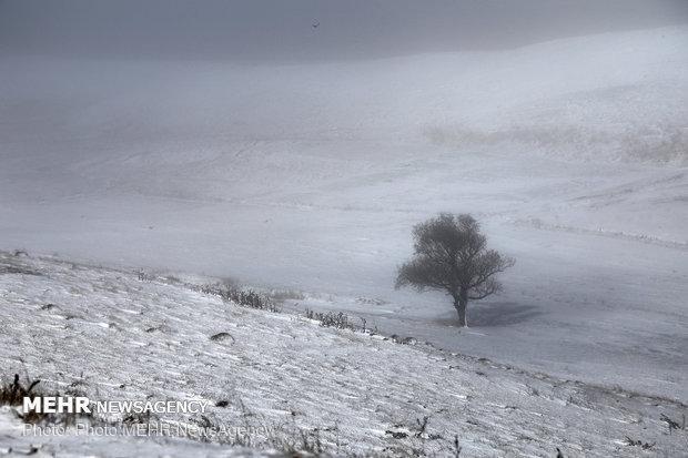 بارش برف در کوه های ایلام