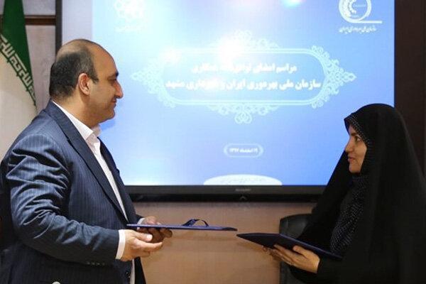 توافق نامه همکاری سازمان ملی بهره وری و شهرداری مشهد منعقد شد