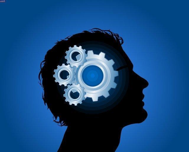 بررسی رابطه یادگیری سازمانی با فرهنگ کارآفرینانه در یک خاتمه نامه