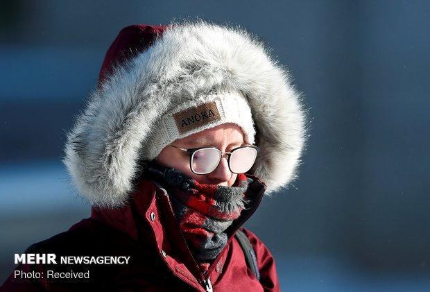 شناسایی پروتئینی که سرما را حس می نماید