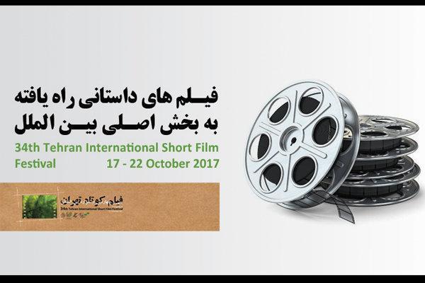 معرفی آثار راه یافته به بخش اصلی بین الملل جشنواره فیلم کوتاه