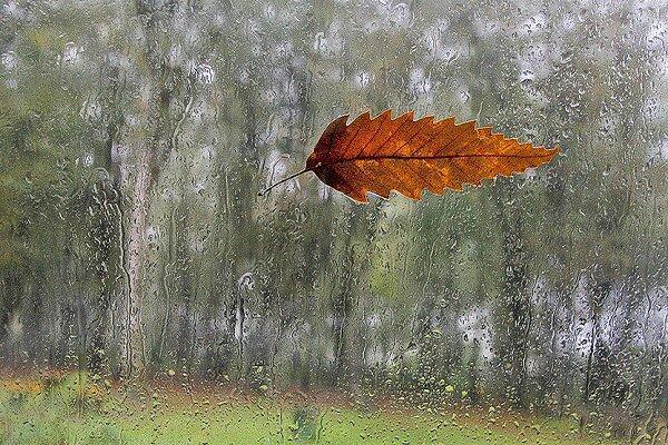 سامانه بارشی جدید چهارشنبه وارد گیلان می شود