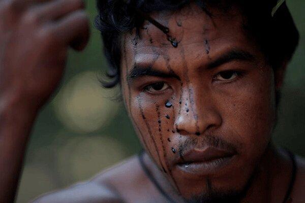 قتل فعال سرشناس حفاظت از جنگل های آمازون