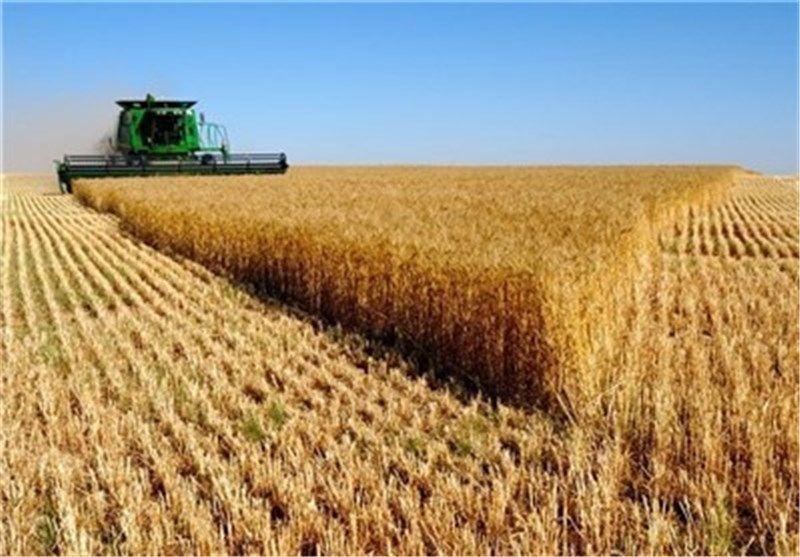 سبقت صادرات بخش کشاورزی و غذا از 7 میلیارد دلار