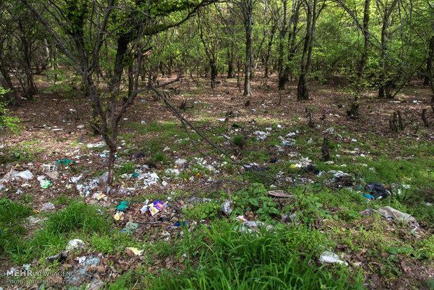 پروژه مشترک سازمان محیط زیست و سازمان ملل در حمایت از صنایع سبز