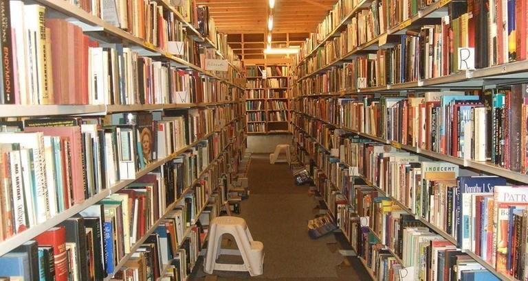شهری که تعداد کتاب هایش بیشتر از ساکنان آن است!