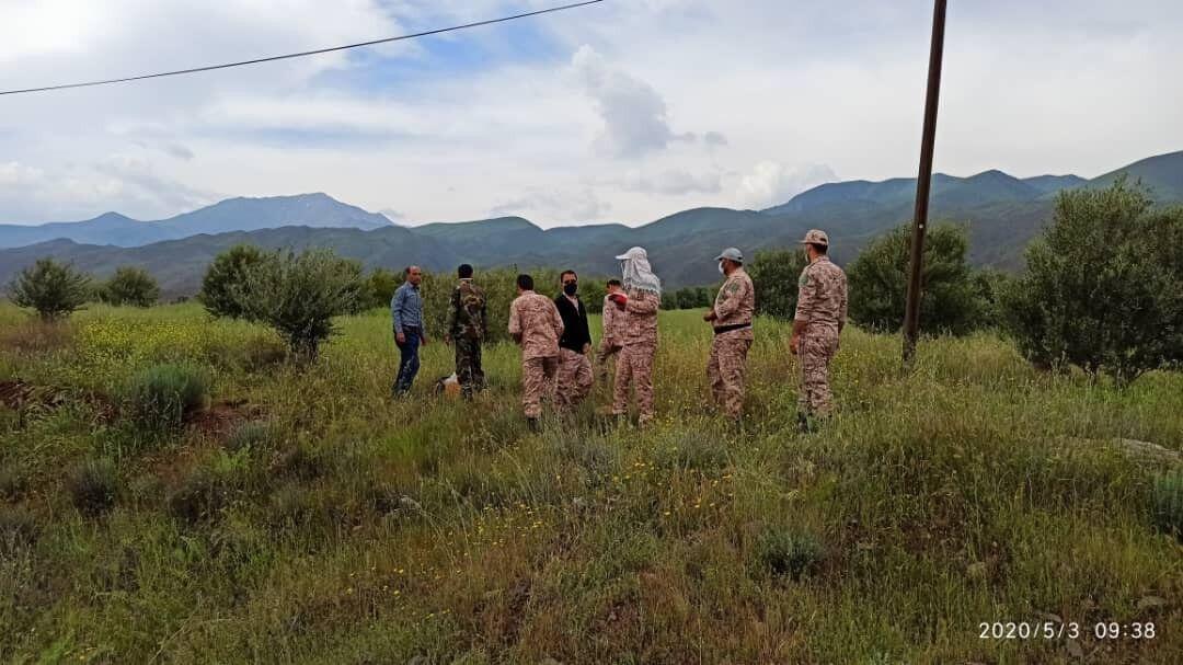 خبرنگاران سه فقره حکم قضایی در اراضی ملی شهرستان طارم اجرا شد