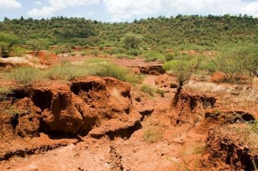 شیوع کرونا سرعت فرسایش خاک در جهان را کاهش داد، سرخیل: خاک تا 40 برابر سریع تر از ذخیره شدن از بین می رود