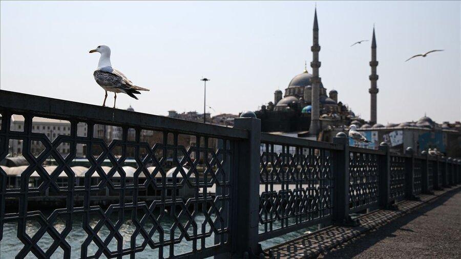 ترکیه آماده پذیرش مسافران و گردشگران خارجی می شود ، شرایط دریافت گواهی سلامت گردشگری ترکیه چیست؟