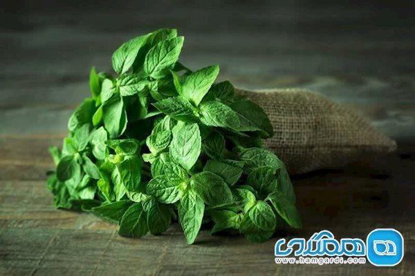 گیاهی معطر و شگفت انگیز برای مبارزه با سندروم روده تحریک پذیر