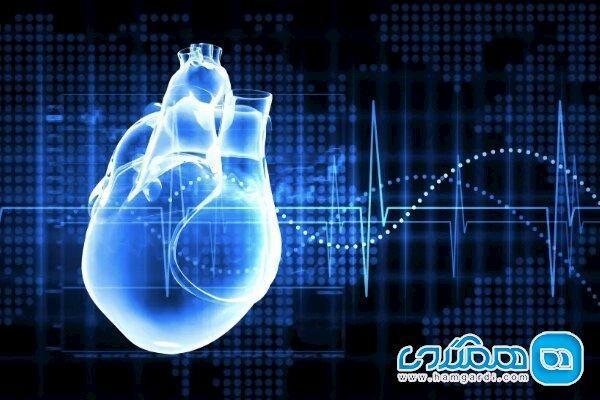 مواد قندی اضافی برای قلب مضر است