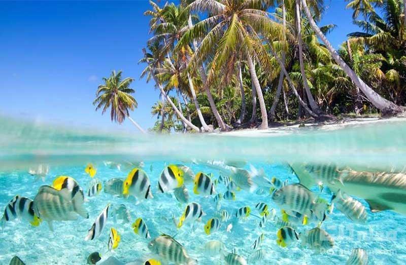 محبوب ترین جزایر دنیا