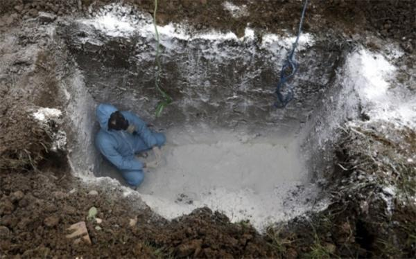 فوت 258 بیمار کرونایی در شبانه روز گذشته